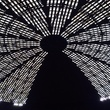 Astrodome roof August 2014