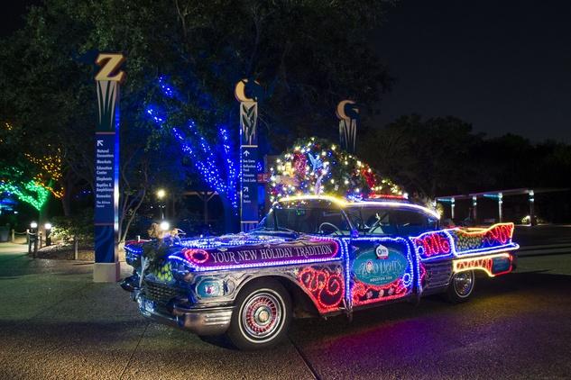 Houston Zoo lights November 2014 art car