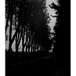 News_Nancy_Camille Claduel_Libbie Masterson_Nuit_Eygalieres_May 2012