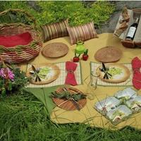 DIFFA picnic example
