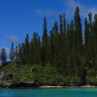 Stephan Lorenz Noumea, New Caledonia November 2014 Piscine Naturelle on Isle of Pines is a snorkeling paradise.