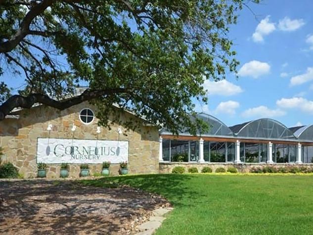 Cornelius Nursery Houston on Voss Road exterior day