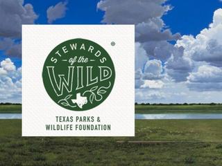 Stewards in the Wild