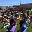 Yoga at Galveston Island Brewing