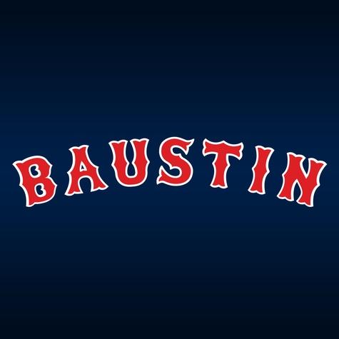 Baustin logo
