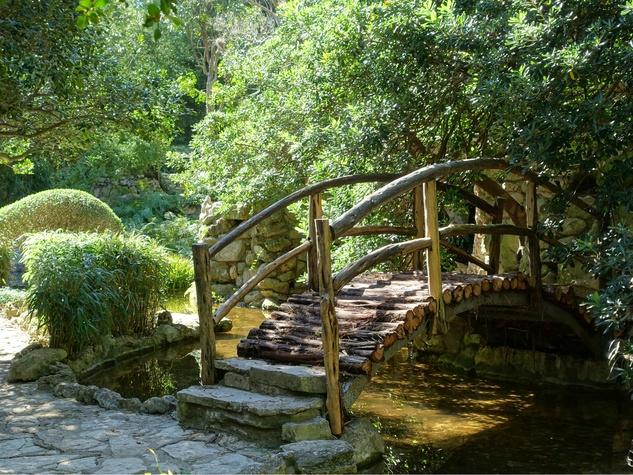 Isamu Taniguchi Japanese Gardens in Zilker Park