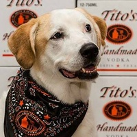 Tito's Vodka brand Vodka for Dog People 2015