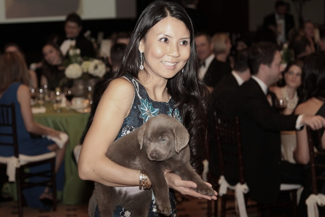 News, Shelby, Park Lover's Ball, Feb. 2015, JC Al-Uqdah and Silver Labrador Retriever
