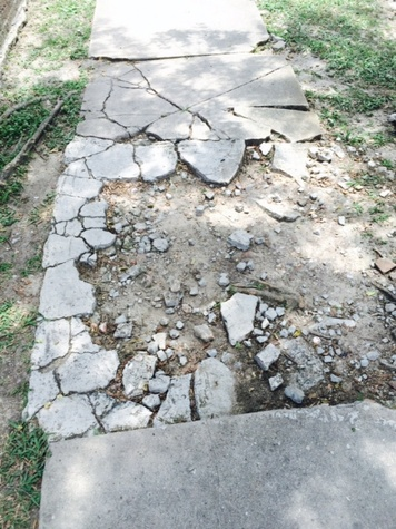 Broken sidewalks in Montrose July 2014