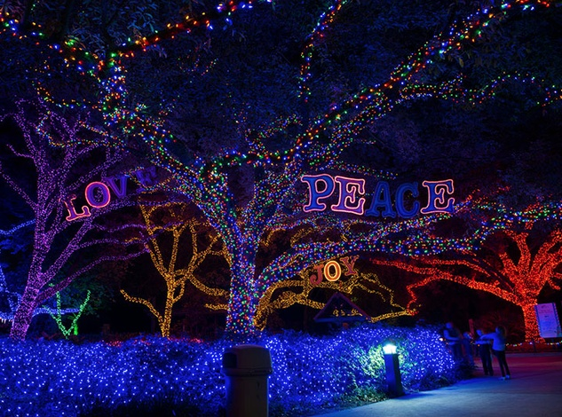 Best holiday lights contest features Houston-area faves: Vote now ...