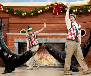 SeaWorld San Antonio presents Christmas Celebration