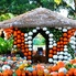: Dallas Arboretum and Botanical Garden presents Autumn at the Arboretum