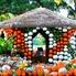 : Dallas Arboretum and Botanical Garden presents Autumn at the Arboretum