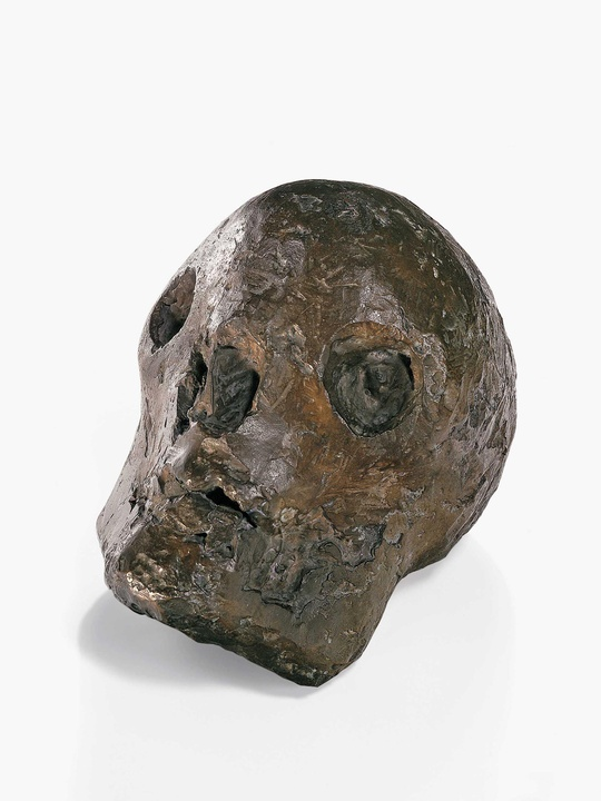 MFAH, Picasso, Skull