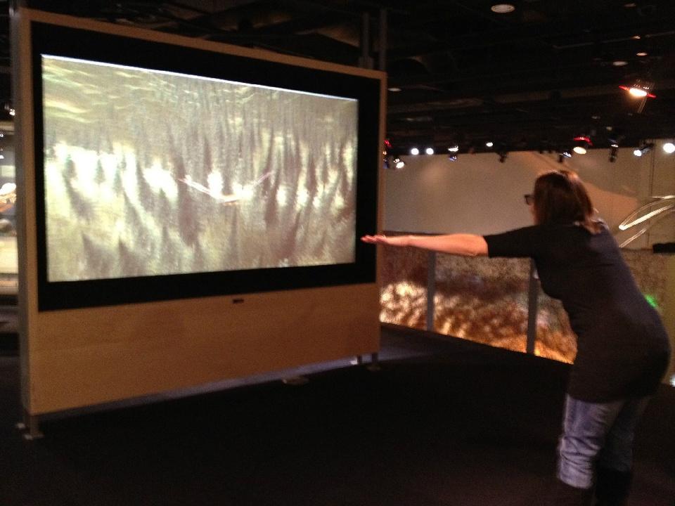 Perot Museum of Nature and Science, flight simulator