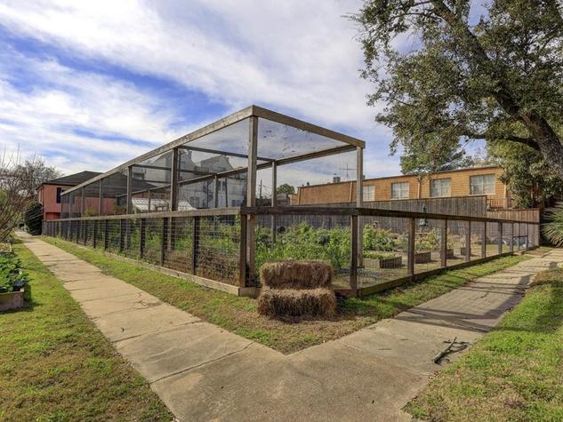1 803 Kipling St. community garden for sale February 2015