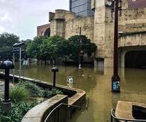 Houston, Hurricane Harvey, flood photos, The Wortham