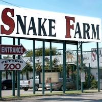 austin photo set: news_july_blythe_snake farm