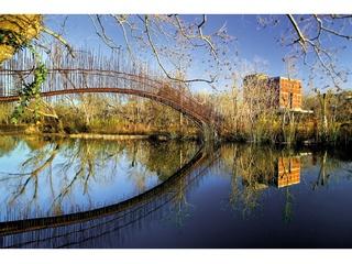 Whitney, atlas, November 2012, Miró y Rivera, Puente peatonal, Austin, Texas, EEUU