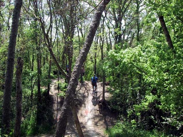 Austin photo: places_outdoors_walnut creek park_trail