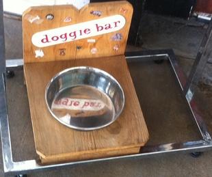 News_Marene_my dog_doggie bar