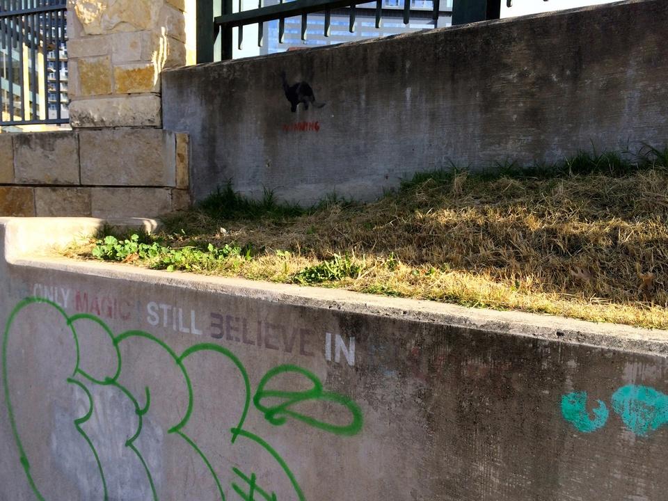 Street Art of Love and Heartbreak in Austin 15