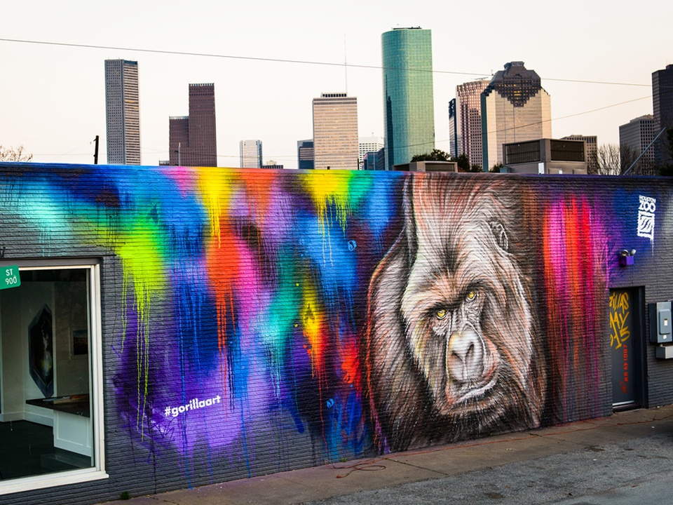 Houston Zoo gorilla murals March 2015 Mr. D finished mural