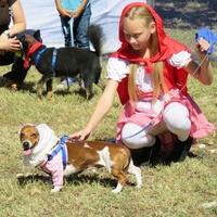The City of Cedar Park presents Cedar Bark Festival