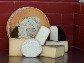 austin photo: news_layne_cheese