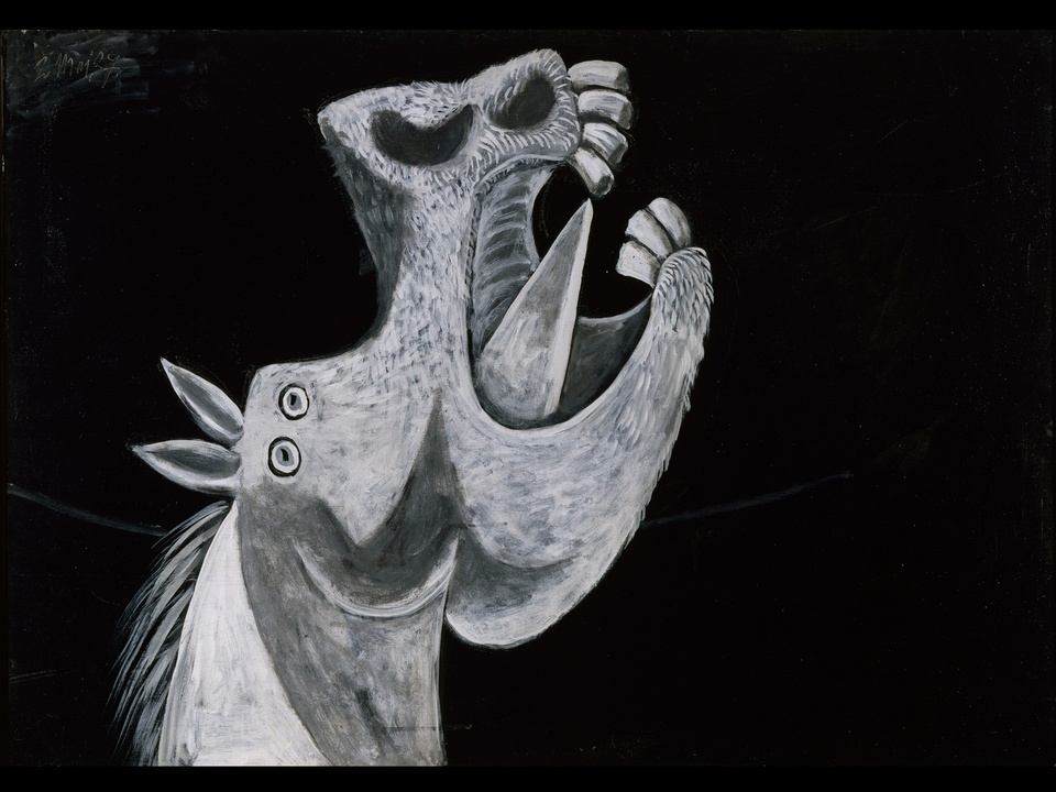 MFAH, Picasso, Head of a Horse