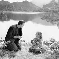 Universal Pictures: Celebrating 100 Years screening - Frankenstein