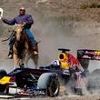 Austin Photo Set: anthony_f1 time to race_nov 2012_red bull