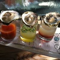 Cove, Oyster Shooters