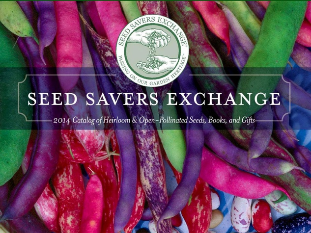 Photo of Seed Savers Exchange catalog cover