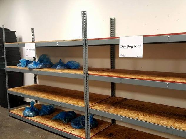 Houston, Interfaith Ministries aniMeals, December 2015, no pet food, empty shelves