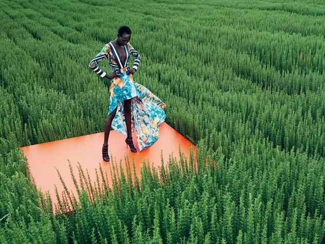 Patterned dress in field