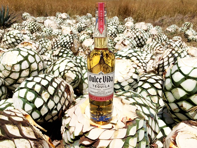 Dulce Vida Tequila agave bottle