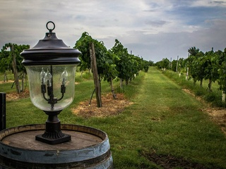 lantern and vineyards at Messina Hof winery in Bryan