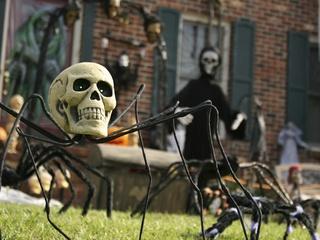 Austin Photo Set: News_Mike_October_2012_halloween decorations