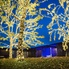 Stephanie Allmon Merry: The most spectacular Christmas light displays around Fort Worth this year