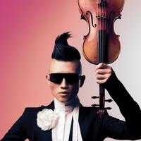 Amadéus Leopold, Violin