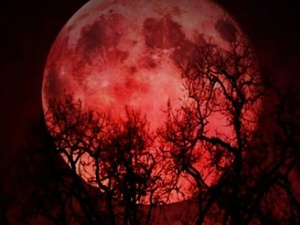 blood moon today in texas - photo #27