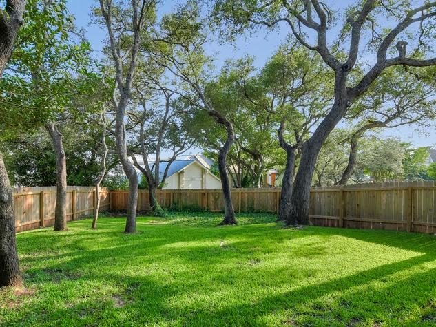 Austin house_6907 Ligustrum