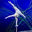 Cirque du Soleil Amaluna February 2015 Water Bowl