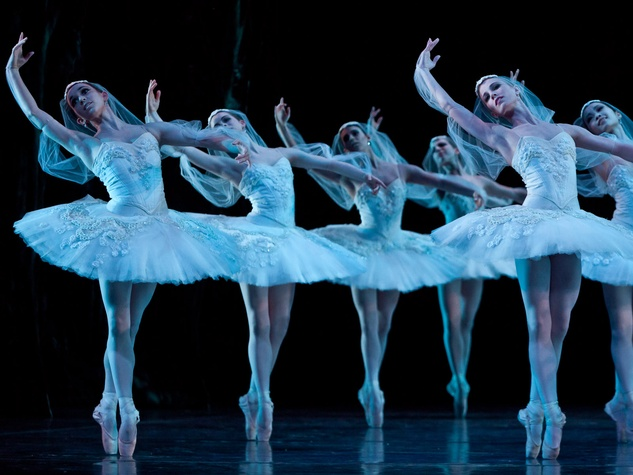 Houston Ballet artist of the Houston Ballet in La Bayadere 2013