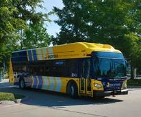 DART CNG bus