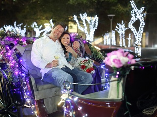 Kevin Bryant and Lily Jang engagement in carriage at Discovery Green December 2014