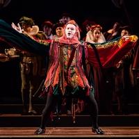 Houston Grand Opera -Rigoletto Ryan McKinny as Rigoletto January 2014