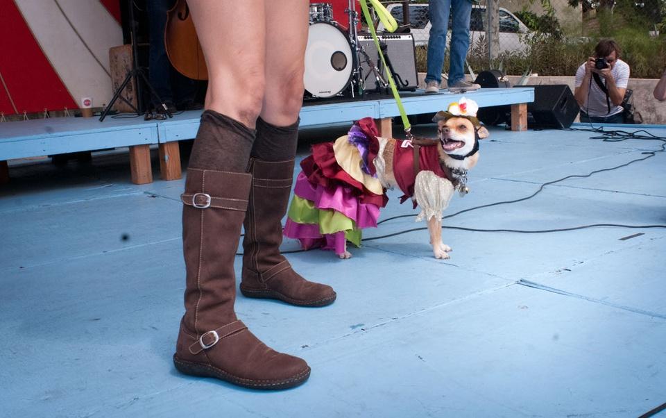 Austin Photo Set: News_Easter dog parade_april 2012_9