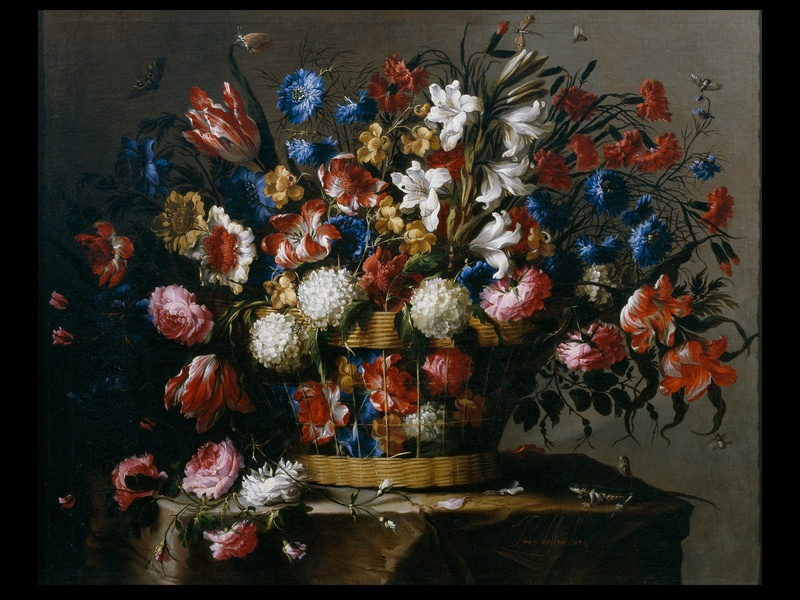 MFAH Prado audio-photo essay, December 2012, Arellano, Basket of Flowers